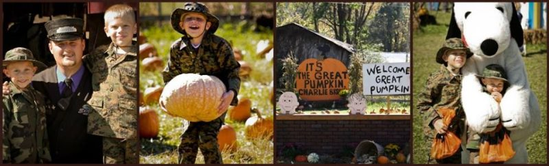 Blog_PumpkinPatchExpress_gsmr.jpg